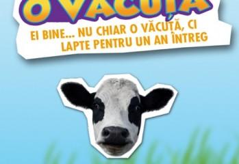 Win a cow - Vizual Campanie